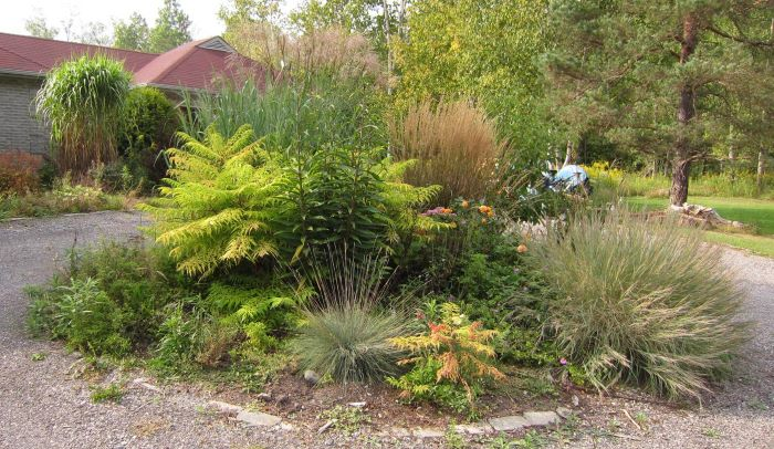5 different ornamental grasses in an island bed.