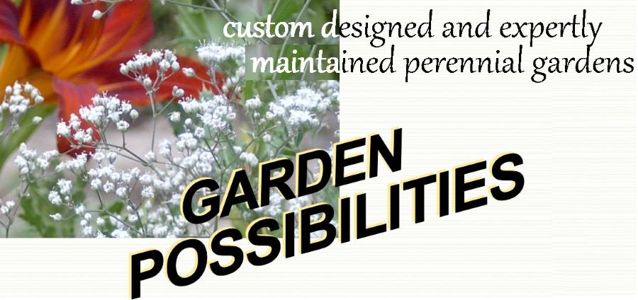 expert gardening services from design and planning the customized garden of your dreams, through to planting, maintenance, or renovation of your existing gardens..
